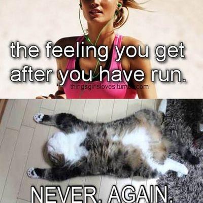MEME-Running
